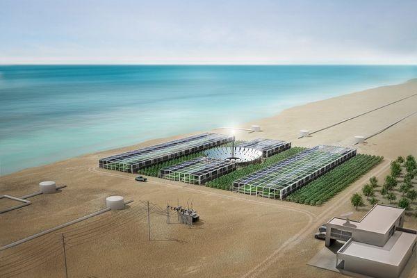 Sahara Forest Project – солнечные электростанции размером с пустыню