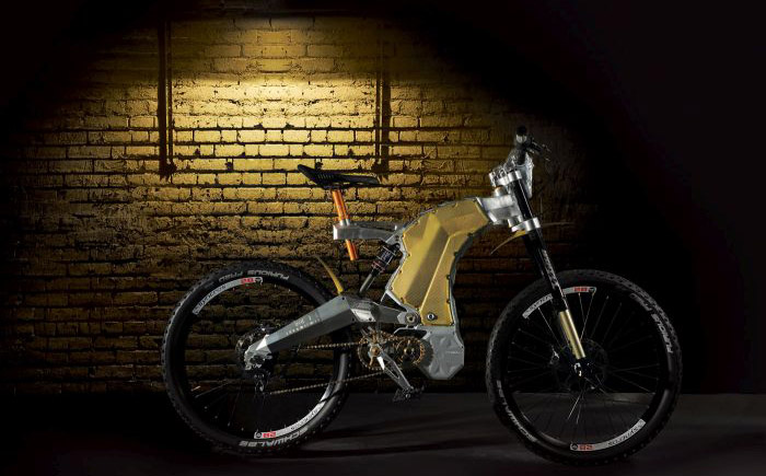 Terminus e-Bike Royal Edition