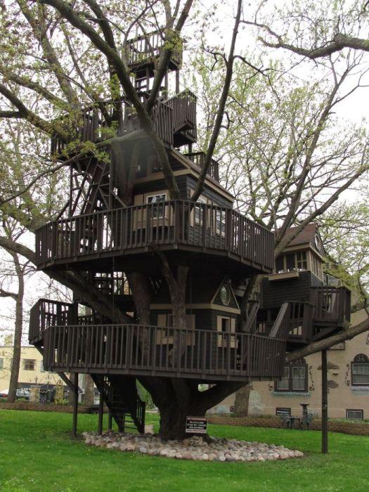 Типичный домик на дереве в Парке Сент Луис.