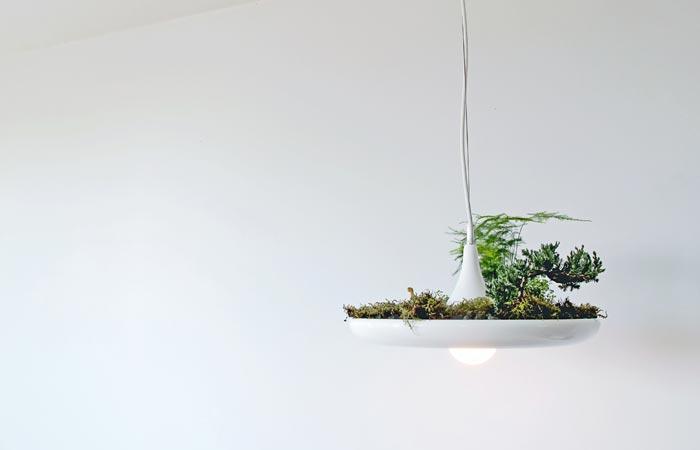 Светильник-кашпо: висячие сады в квартирных условиях.