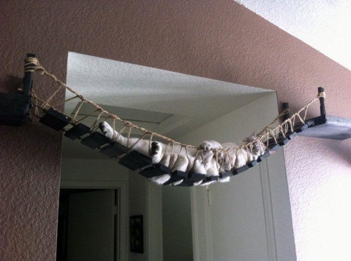 Кошачий гамак от CatastrophiCreations.