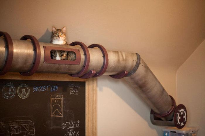 Кошачий тоннель в виде старой жестяной трубы от Because We Can.