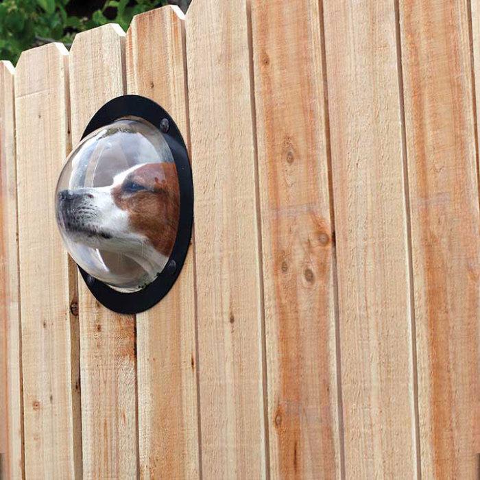 «Панорамное» окно в заборе.