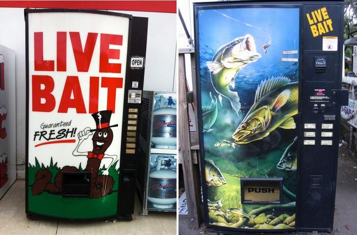 Live Bait – торговый автомат по продаже живца