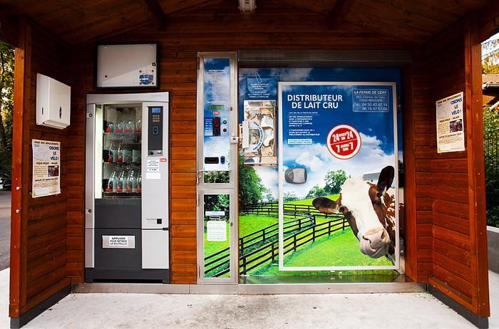 Milk Dispenses – автомат по продаже парного молока