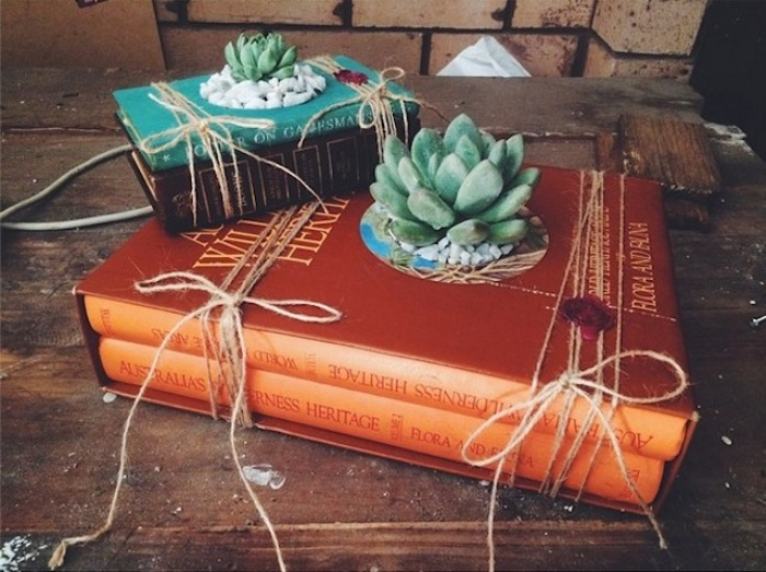 Новая жизнь старых книг: оригинальное кашпо для суккулентов.