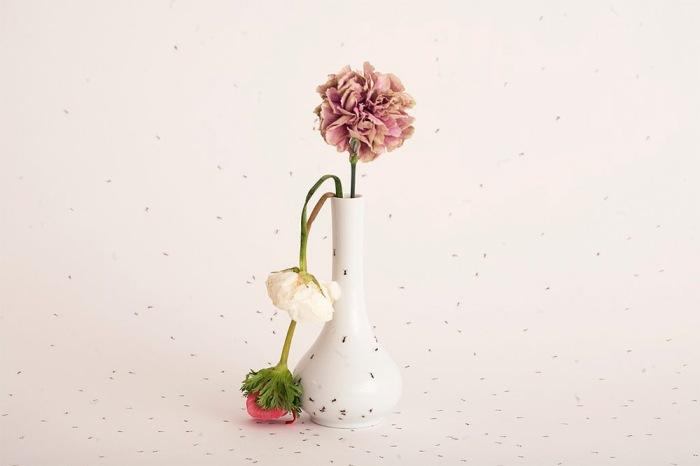 Изящная ваза с муравьями.