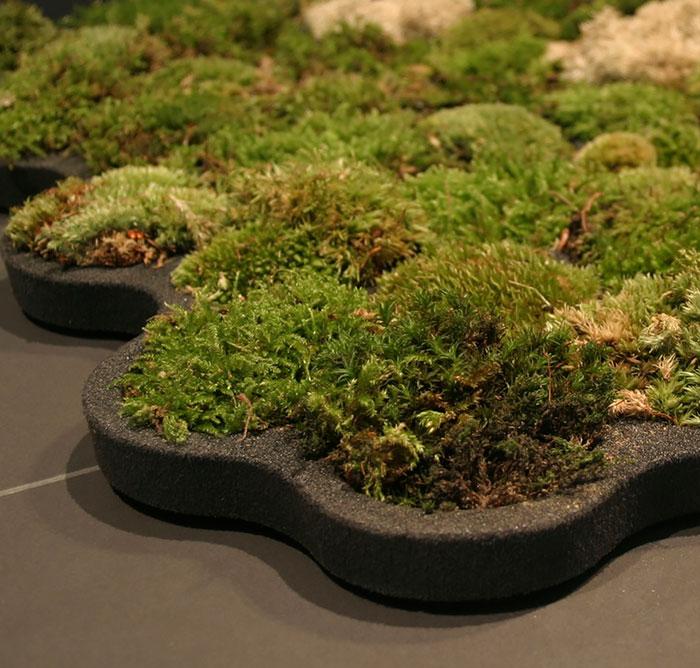 Удобное решение для тех, кто любит выращивать растения дома.