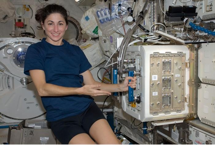 Домик для жизни мышей-астронавтов на орбите