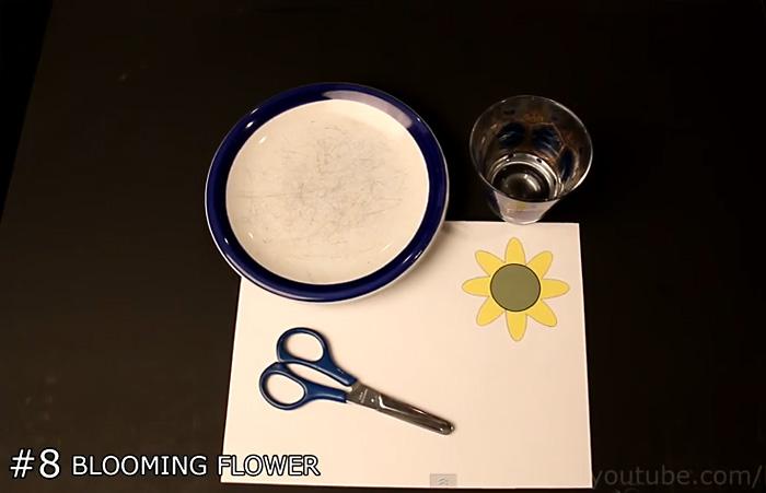 Видео-инструкция: как сделать бумажный цветок, который раскрывается в воде