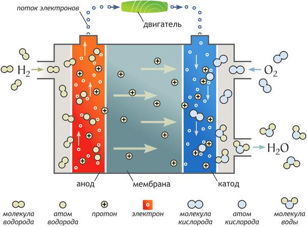 Принцип действия водородного топливного элемента