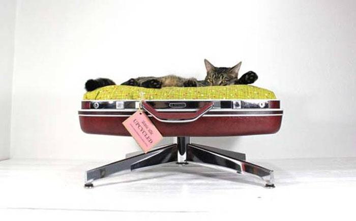 Винтажная лежанка для кота, любящего путешествовать