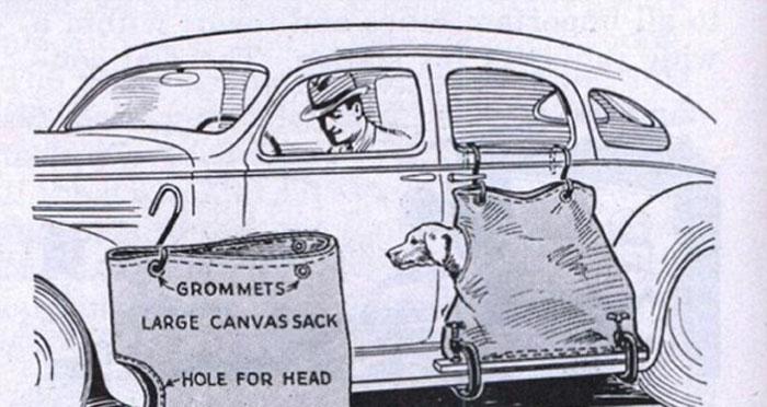 Мешок для собаки в прошлом