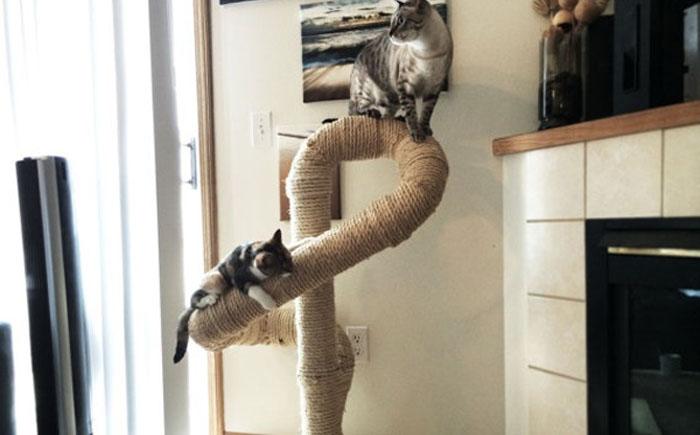 Сизалевое дерево для счастливых котов