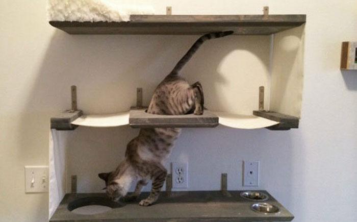 Трехуровневый бункер для кота
